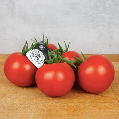 Tomate Grappe Sweet Pearl - France