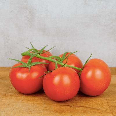 Tomate Grappe - France