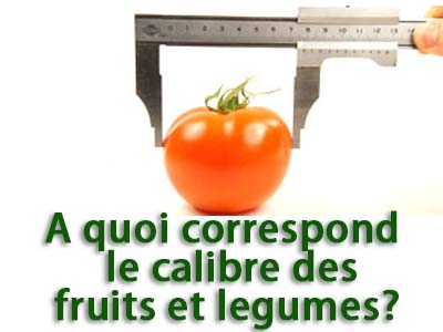 calibre des fruits et legumes